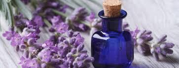 aromatherapy/ oil diffuser